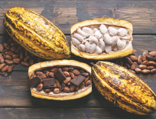 What is Cacao?